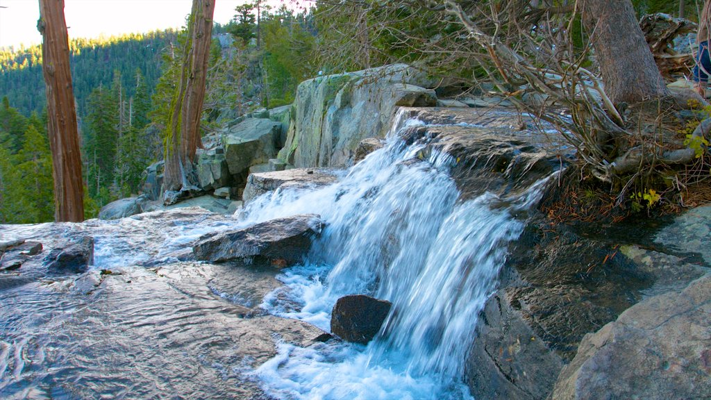 Lake Tahoe showing a waterfall, forest scenes and landscape views