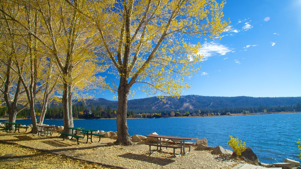 Palm Springs which includes autumn leaves, a lake or waterhole and landscape views