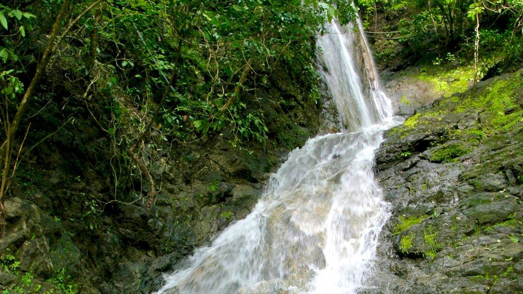 Costa Rica mostrando una catarata