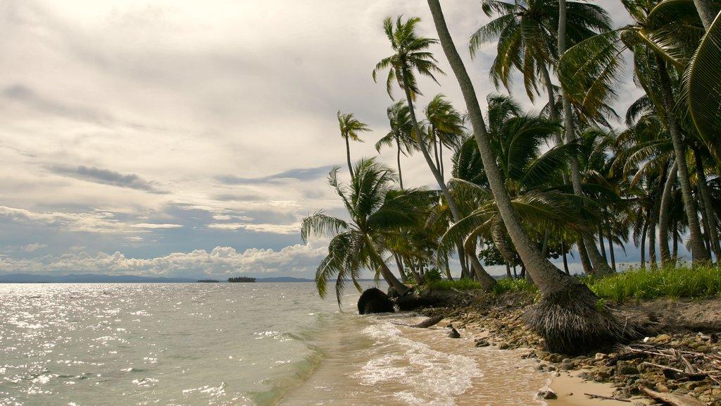 Panama featuring tropical scenes, a beach and general coastal views