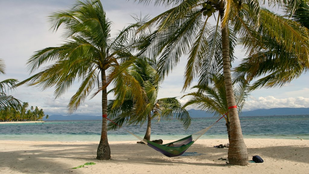 Panama featuring tropical scenes, a sandy beach and landscape views