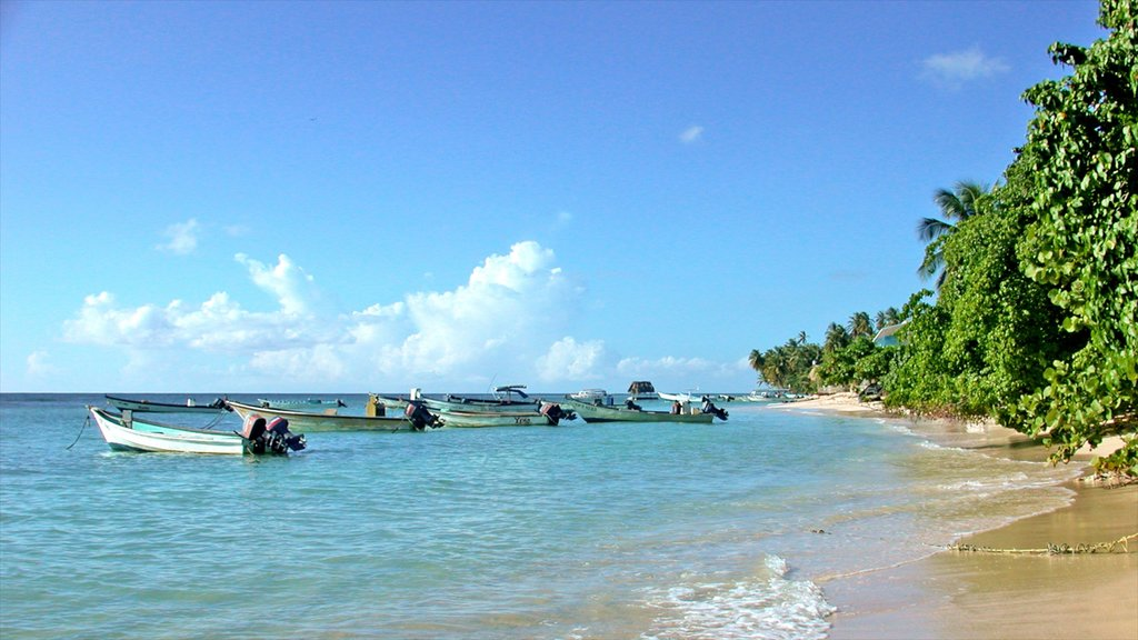 Trinidad which includes landscape views, boating and tropical scenes