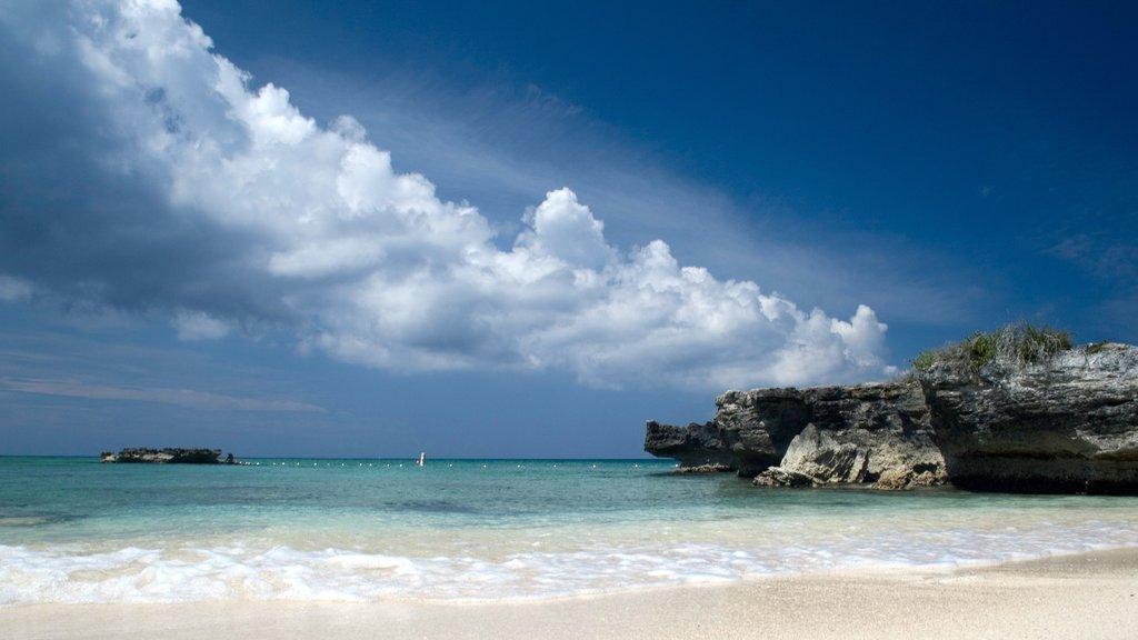 Islas Caimán ofreciendo vistas de paisajes, escenas tropicales y una playa de arena