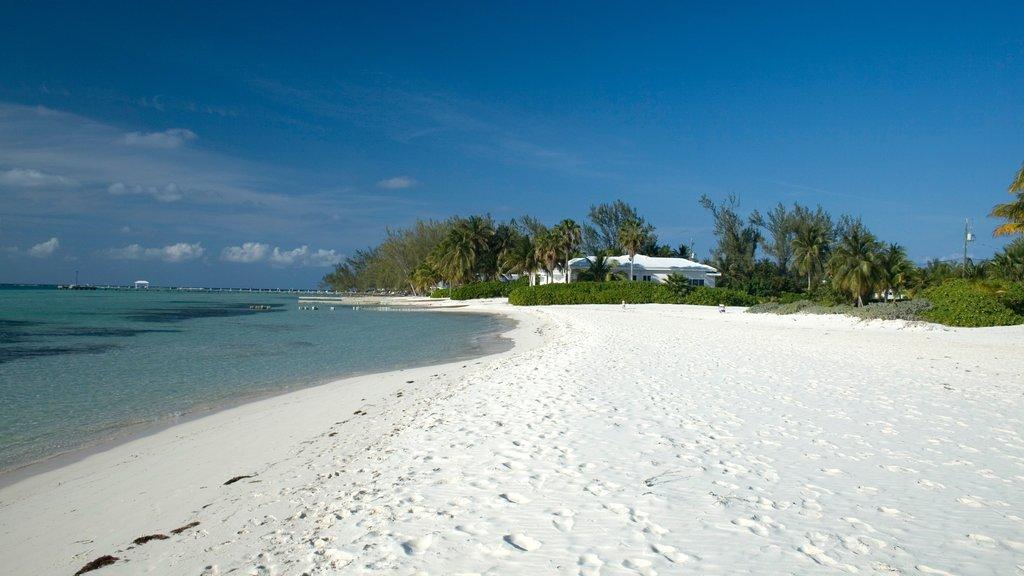 Islas Caimán ofreciendo una playa de arena, escenas tropicales y vistas de paisajes