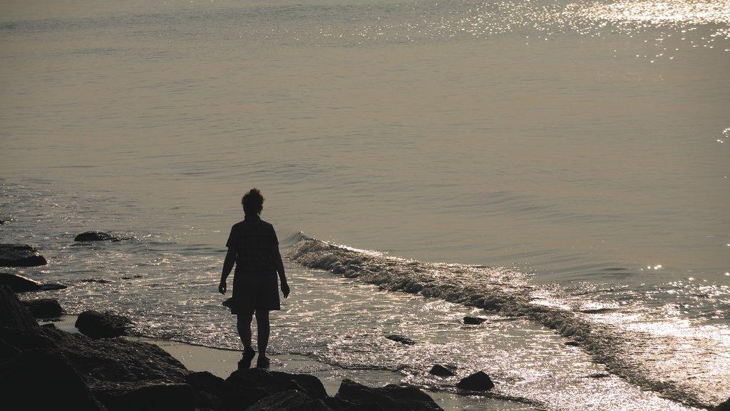 Galveston mostrando una playa, una playa de guijarros y una puesta de sol