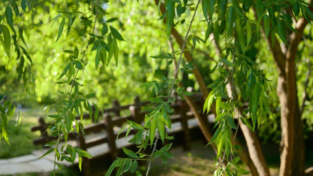 Bosque de Seúl que incluye un jardín y un puente