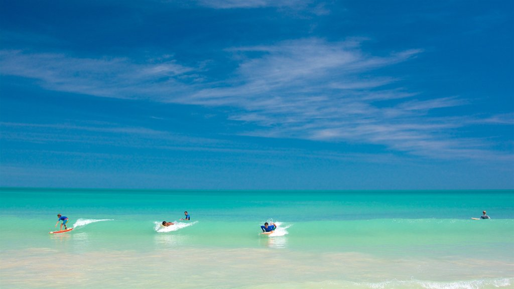 Broome which includes general coastal views, tropical scenes and surfing