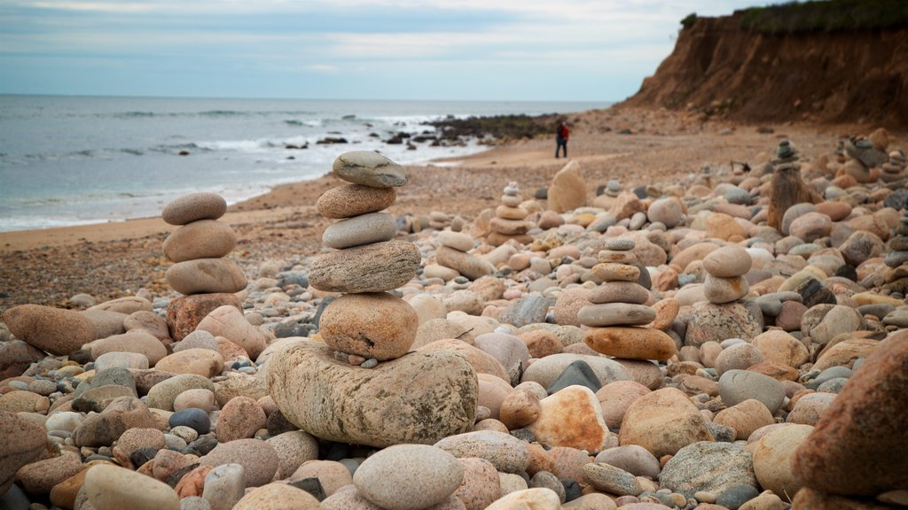 Montauk Point which includes rocky coastline, general coastal views and a pebble beach