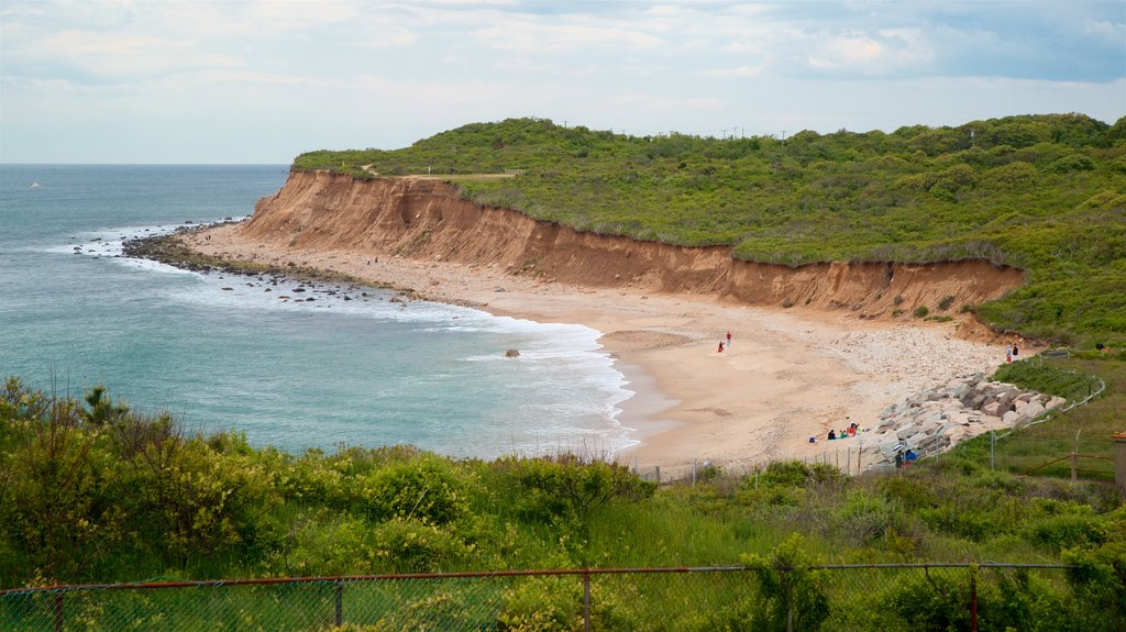 Montauk Point showing a sandy beach and general coastal views