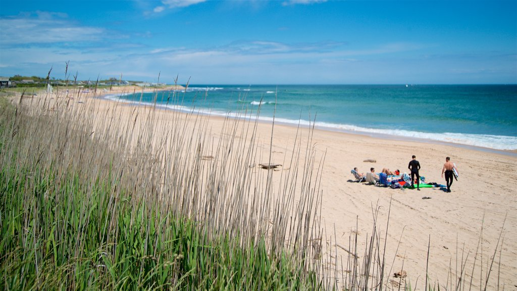 Playa Ditch Plains ofreciendo vistas generales de la costa y una playa de arena y también un pequeño grupo de personas