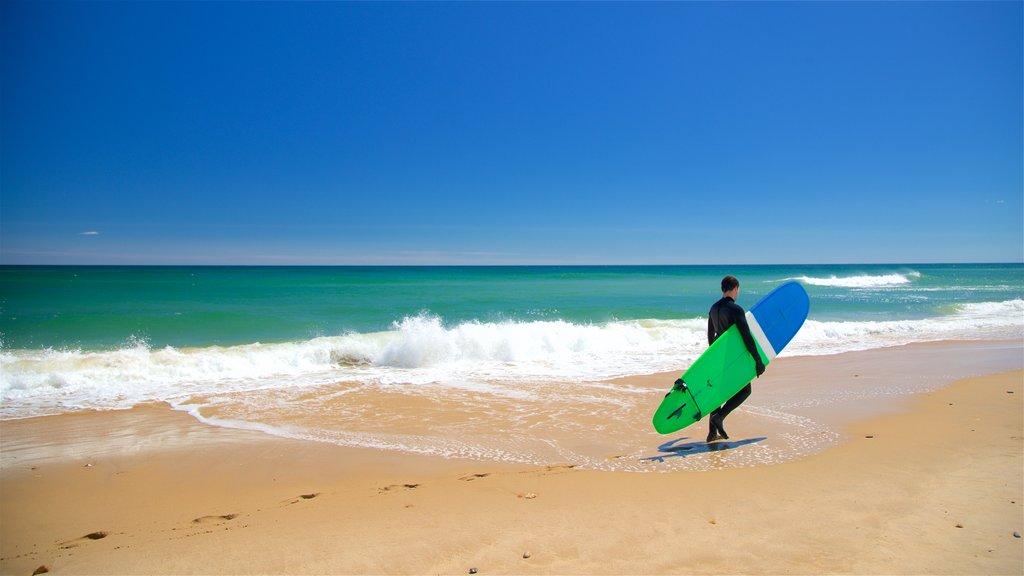 Ditch Plains Beach which includes general coastal views, a sandy beach and surfing