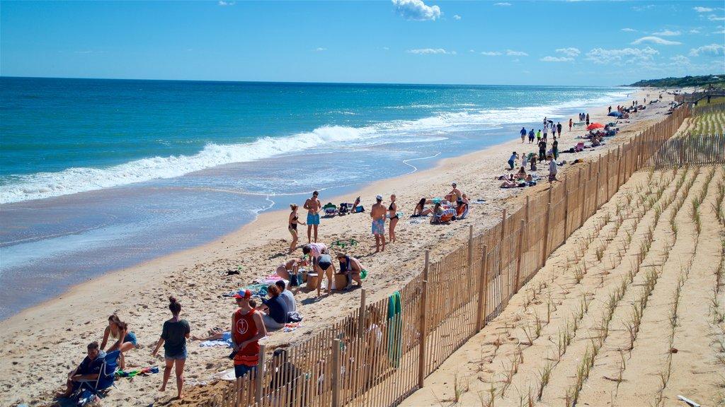 Montauk que incluye vistas generales de la costa y una playa de arena y también un pequeño grupo de personas