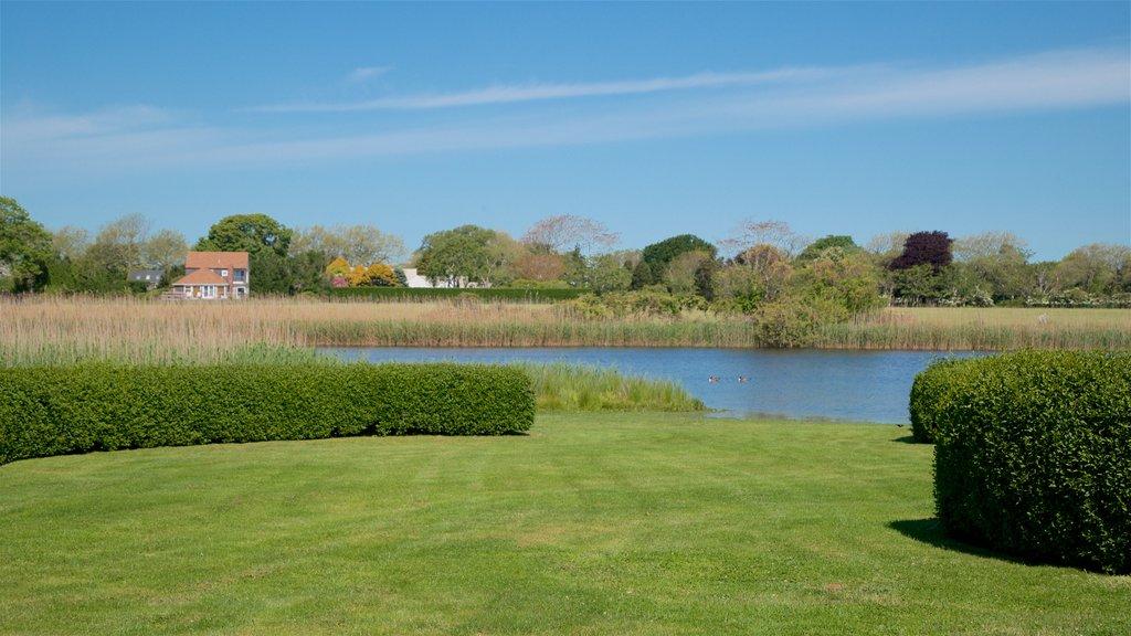 East Hampton ofreciendo un jardín y un estanque