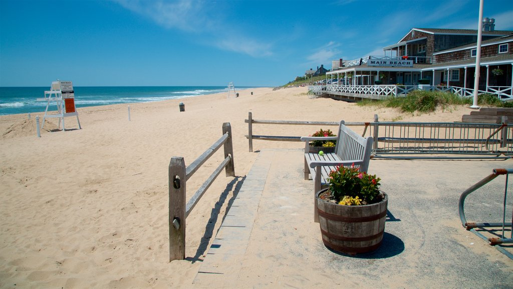 East Hampton Main Beach showing general coastal views, a sandy beach and flowers