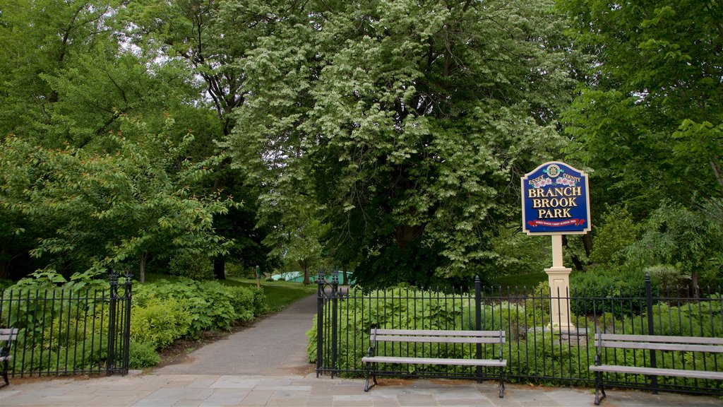 Branch Brook Park showing a park and signage