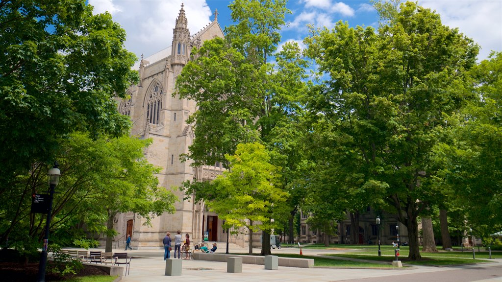 Princeton University featuring a park, a church or cathedral and heritage elements