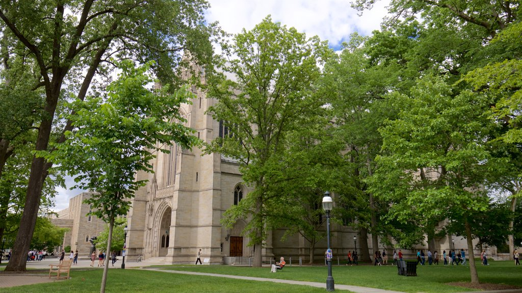 Princeton University showing heritage elements, a church or cathedral and a park