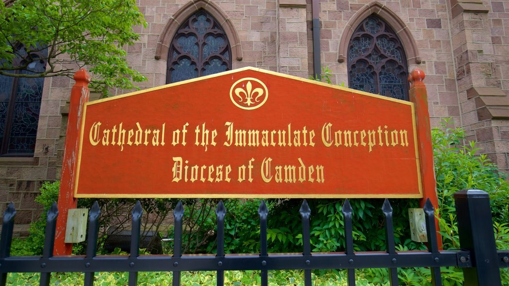 Cathedral of the Immaculate Conception showing signage