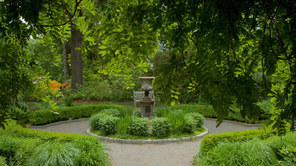 Van Vleck House & Gardens showing a park