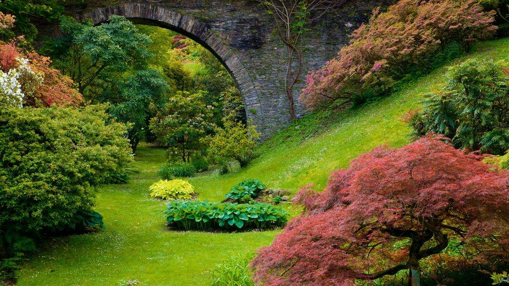 Villa Taranto Botanical Garden showing wildflowers and a garden