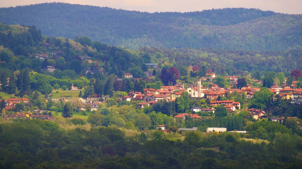 Angera which includes a small town or village and tranquil scenes