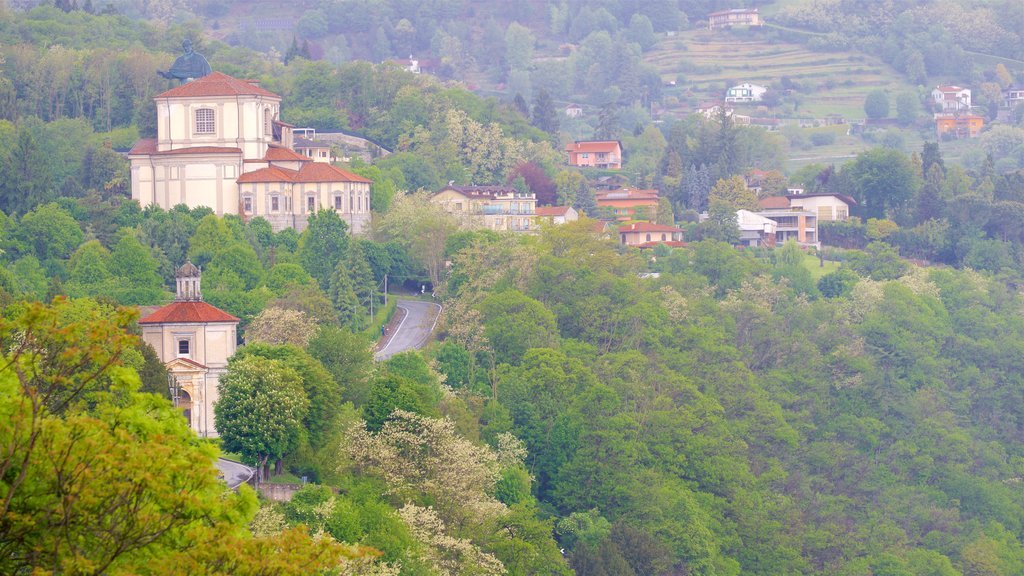 Angera showing tranquil scenes and a small town or village