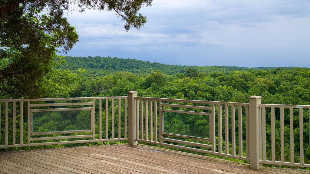 Ha Ha Tonka State Park featuring forest scenes, views and landscape views