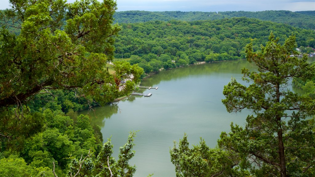 Ha Ha Tonka State Park featuring tranquil scenes, forests and a lake or waterhole