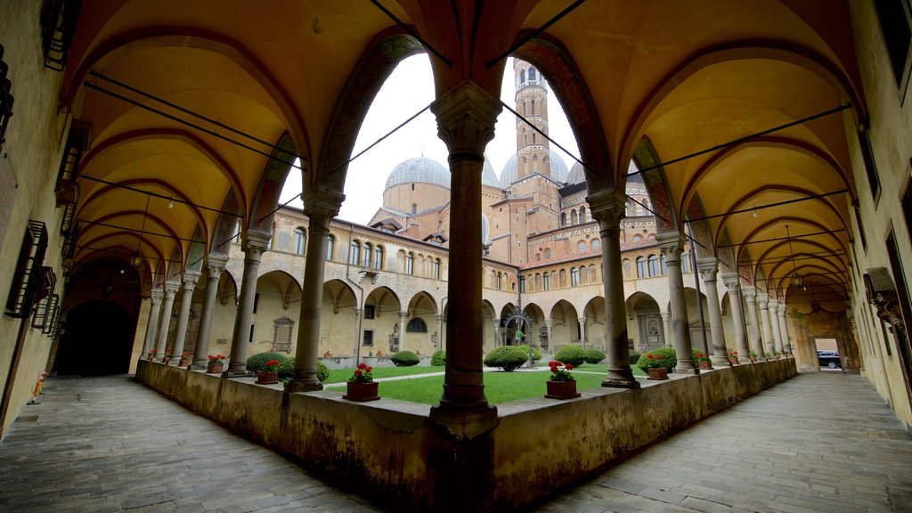 Basilica di Sant\'Antonio da Padova which includes heritage elements, a garden and interior views