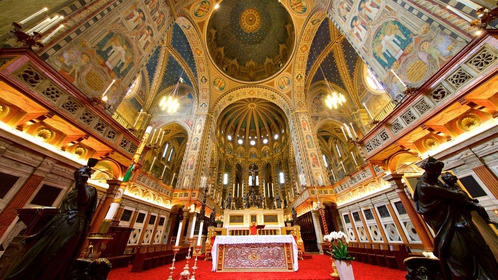 Basilica di Sant\'Antonio da Padova mostrando vistas internas, elementos de patrimônio e uma estátua ou escultura