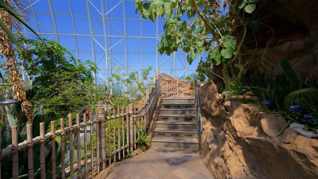 Myriad Botanical Gardens featuring a garden and interior views