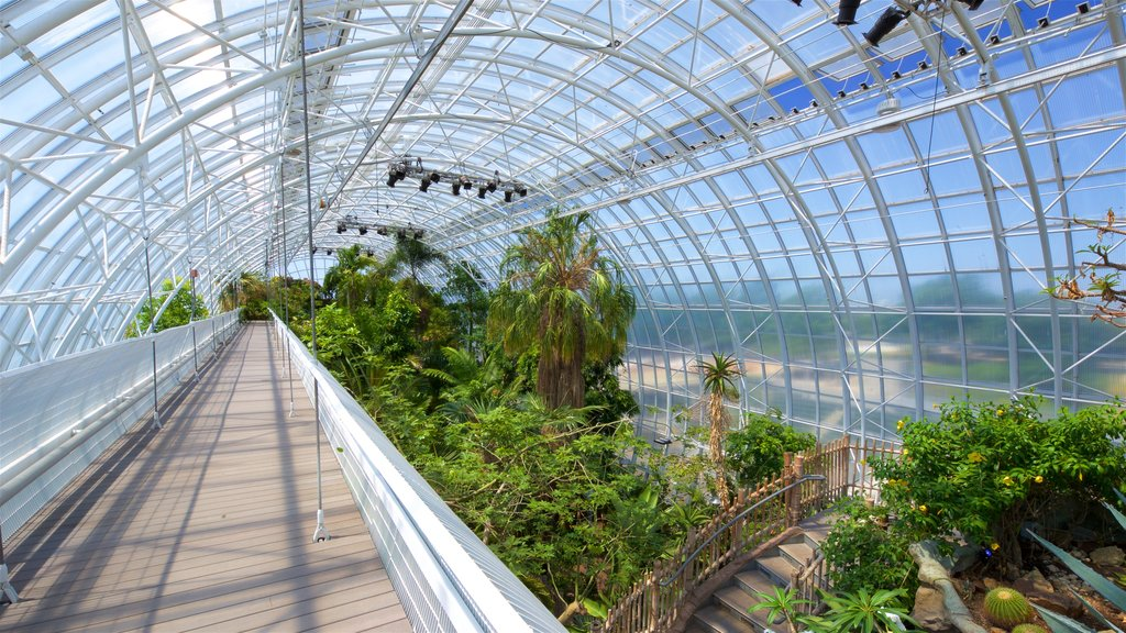 Myriad Botanical Gardens showing a garden and interior views