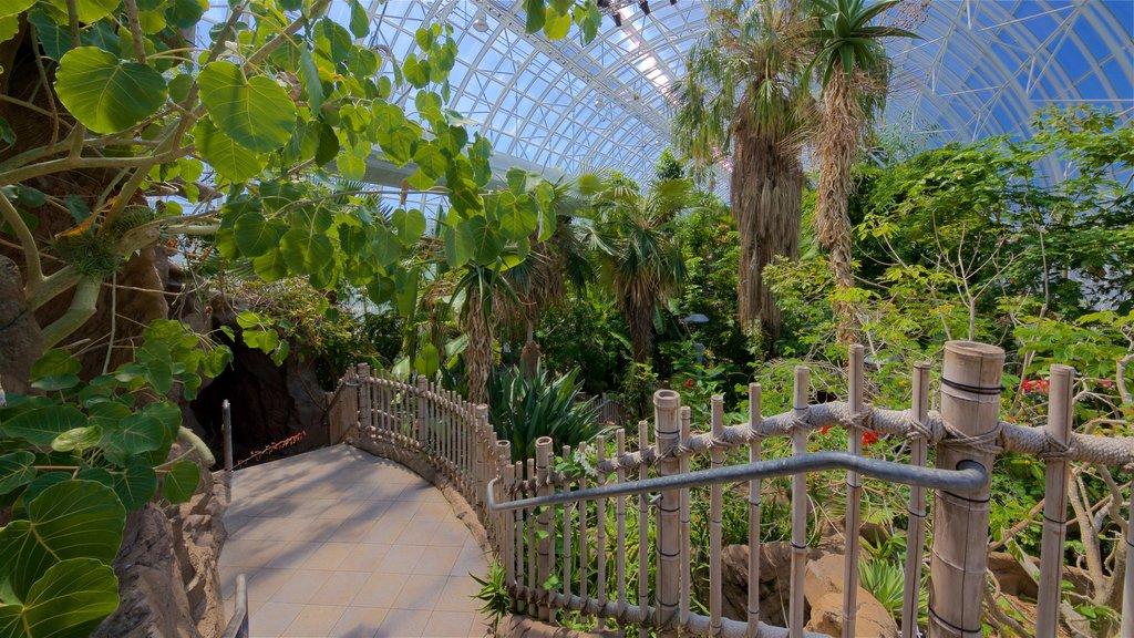 Myriad Botanical Gardens featuring interior views and a garden