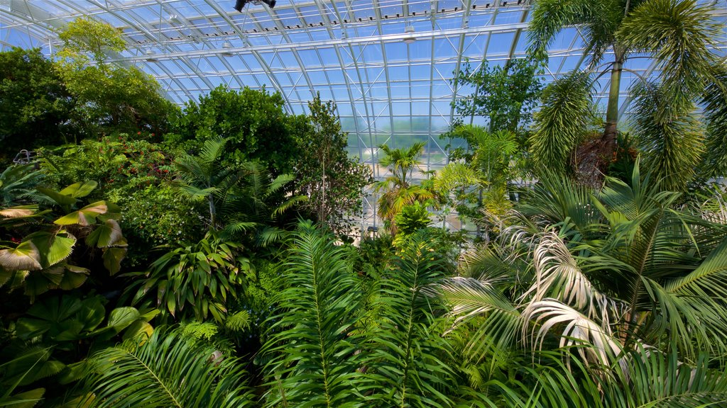 Myriad Botanical Gardens which includes a park and interior views