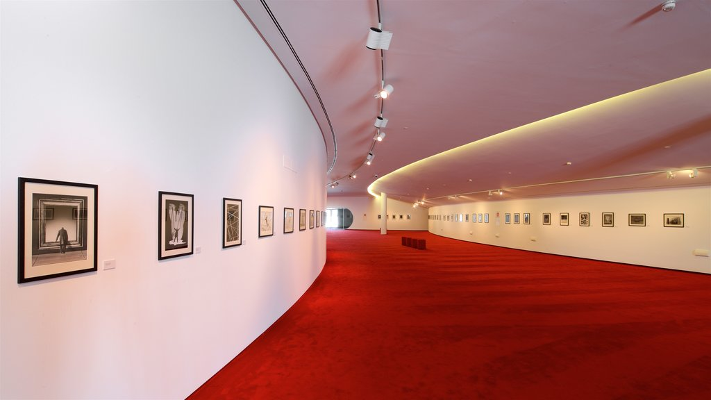Oscar Niemeyer Cultural Centre showing art and interior views