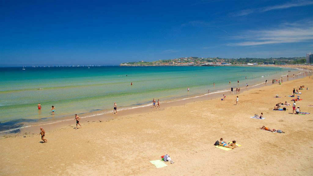 San Lorenzo Beach featuring general coastal views and a beach as well as a small group of people