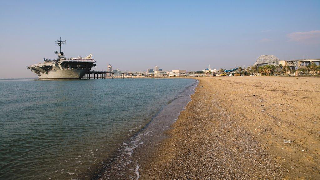 Corpus Christi showing a sandy beach, a marina and skyline