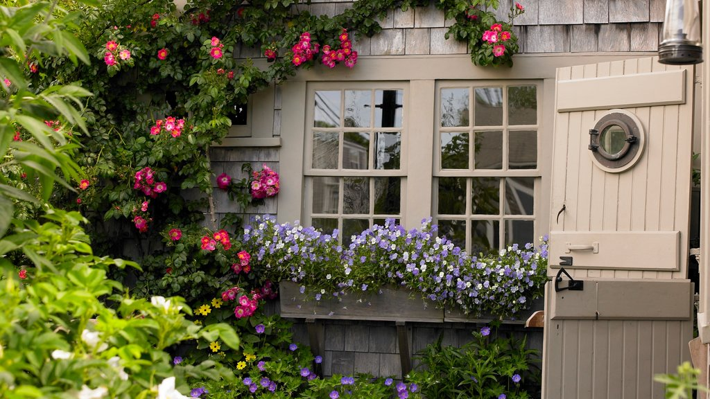 Nantucket which includes a small town or village, a house and flowers