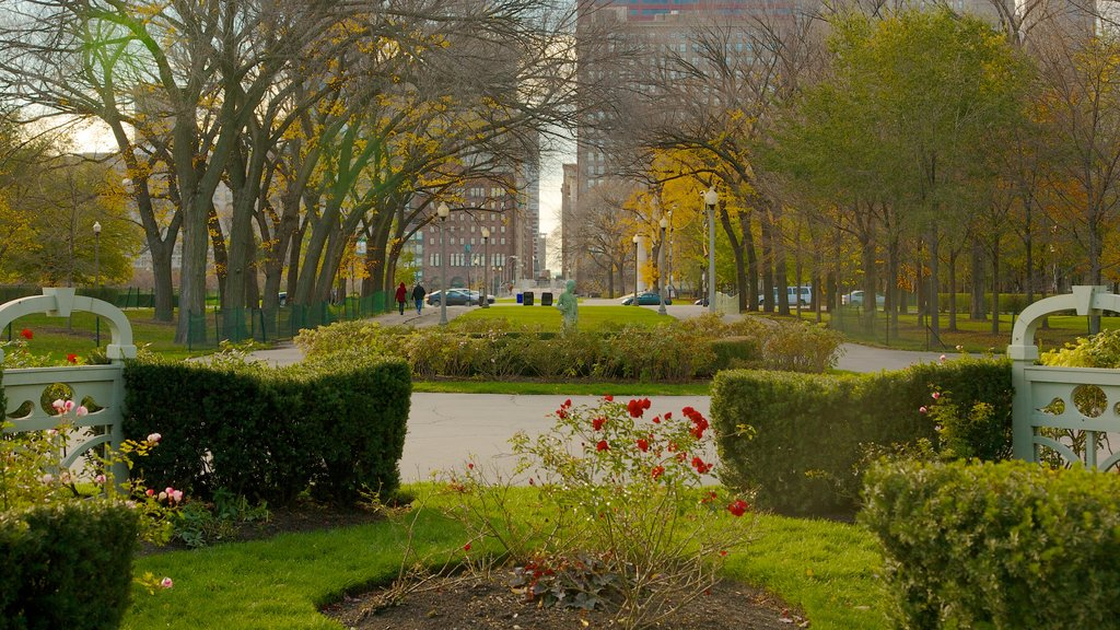 Millennium Park showing flowers, a park and a city