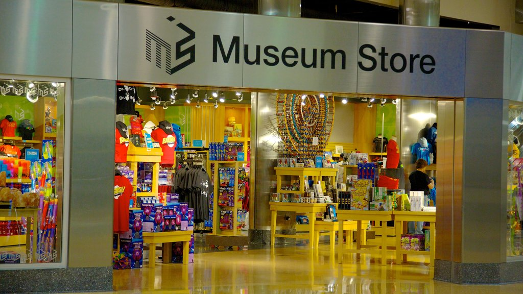 Museum of Science & Industry which includes shopping