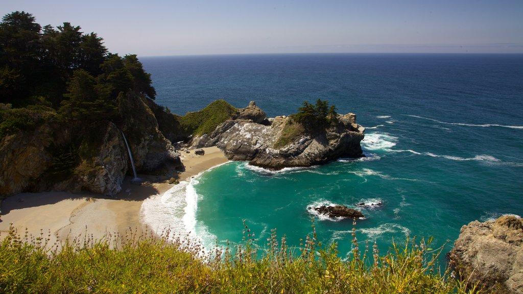 Pfeiffer Big Sur State Park que incluye vistas de paisajes y costa escarpada