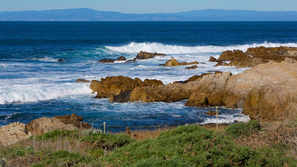 Asilomar State Beach showing rugged coastline and landscape views