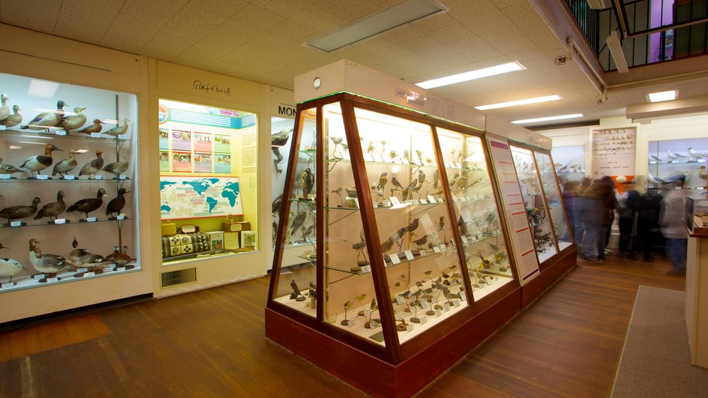 Pacific Grove Museum of Natural History showing interior views as well as a large group of people