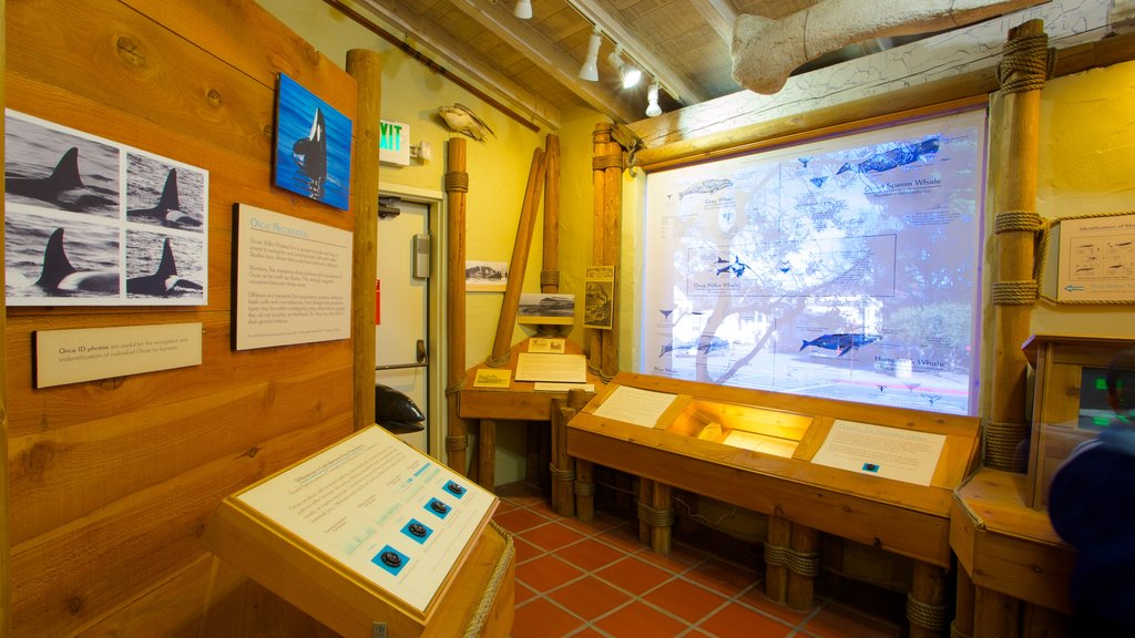 Pacific Grove Museum of Natural History featuring interior views