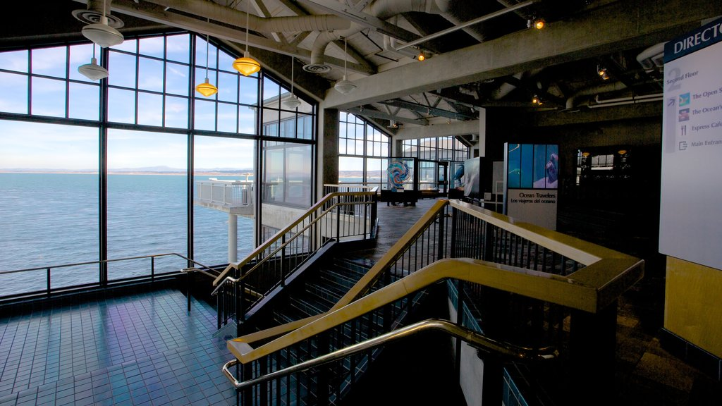 Monterey Bay Aquarium which includes marine life and interior views