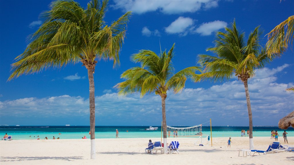 Cancun showing a sandy beach, general coastal views and tropical scenes
