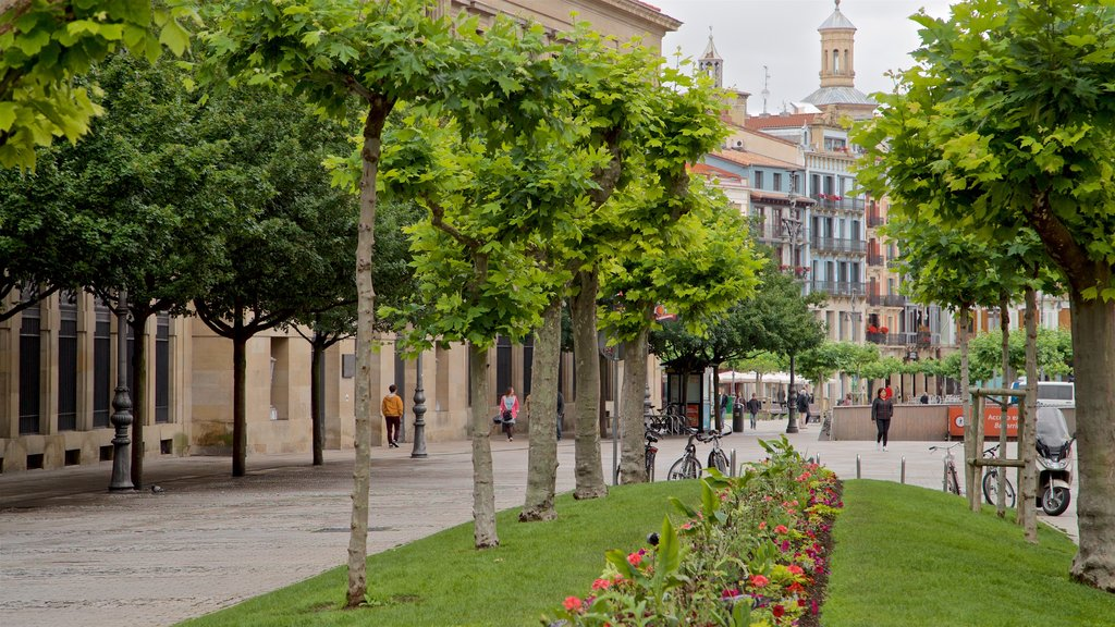Old Town showing a park, flowers and a city