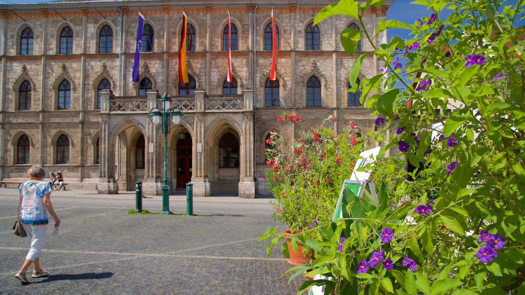 Weimar showing wildflowers and heritage elements