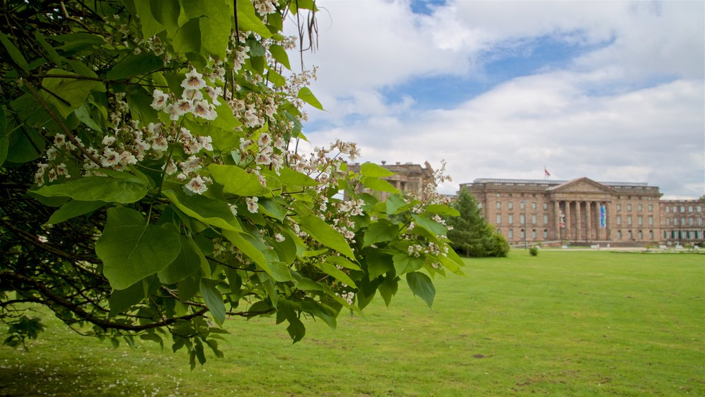 Schloss Wilhelmshoehe which includes heritage architecture, a park and wildflowers