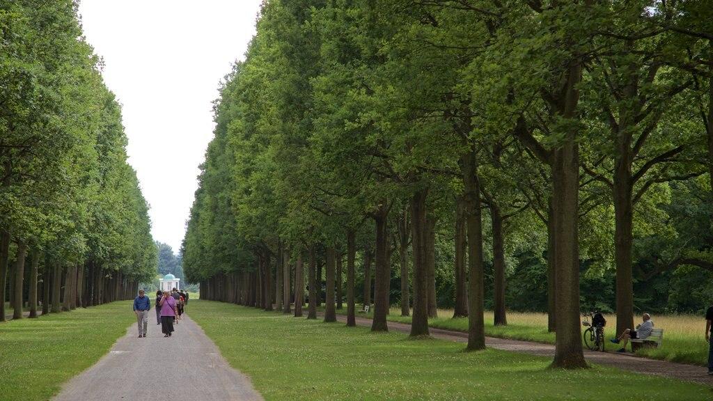 Karlsaue Park showing a garden as well as a couple